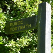 Pubic Footbath