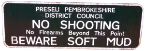 Day 6 No shooting